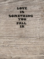 LOVE IS SOMETHING YOU FALL IN.の表紙画像